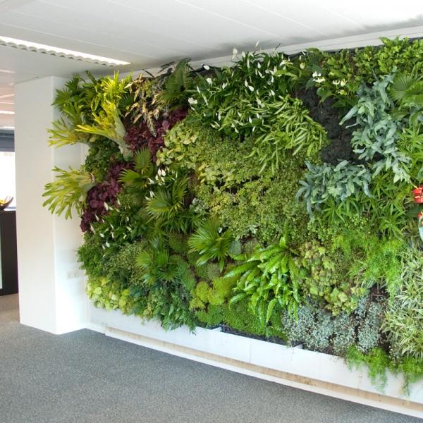Greenface het gt systeem - Outs idee open voor levende ...