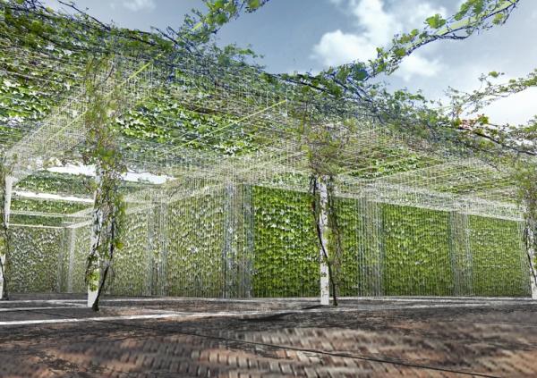Greenface gs greenpergola rotterdam - Pergola klimplant ...